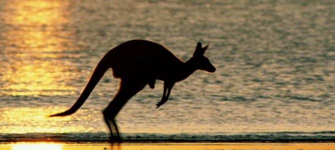 Любопытные факты об Австралии