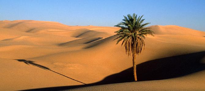 Пустыни Африки — интересные факты