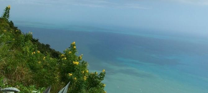 Великолепная Ямайка