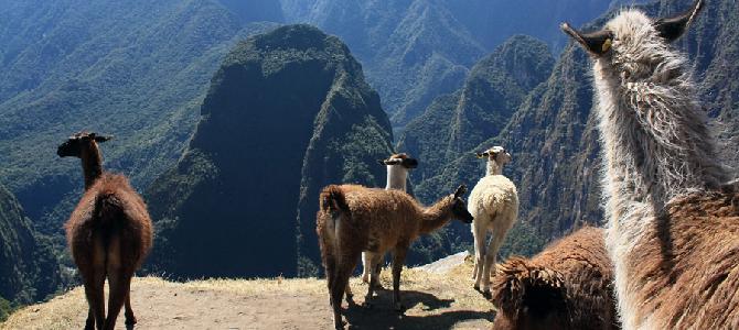 20 интересных фактов о Перу