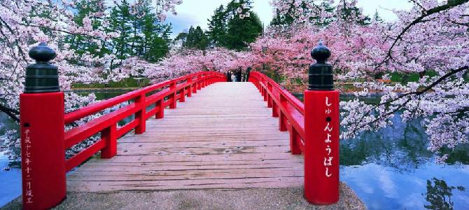 31 интересный факт о Японии