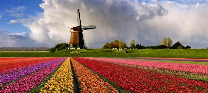 21 интересный факт о Нидерландах